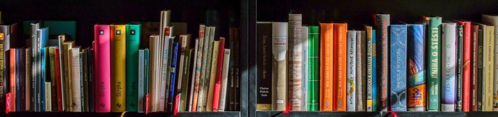 Maitrise de la langue en Charente-Maritime